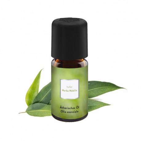 VITA Ätherisches Öl Eukalyptus
