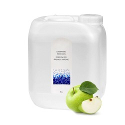 Dampfbademulsion Grüner Apfel 5l