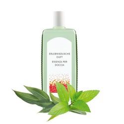 Duft für Erlebnisdusche Eukalyptus-Menthol 1l