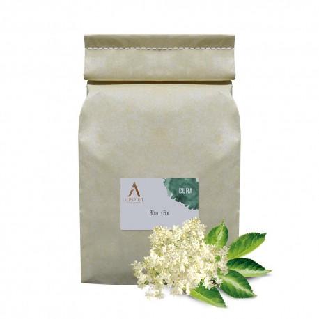 CURA Erbe aromatiche Sambuco